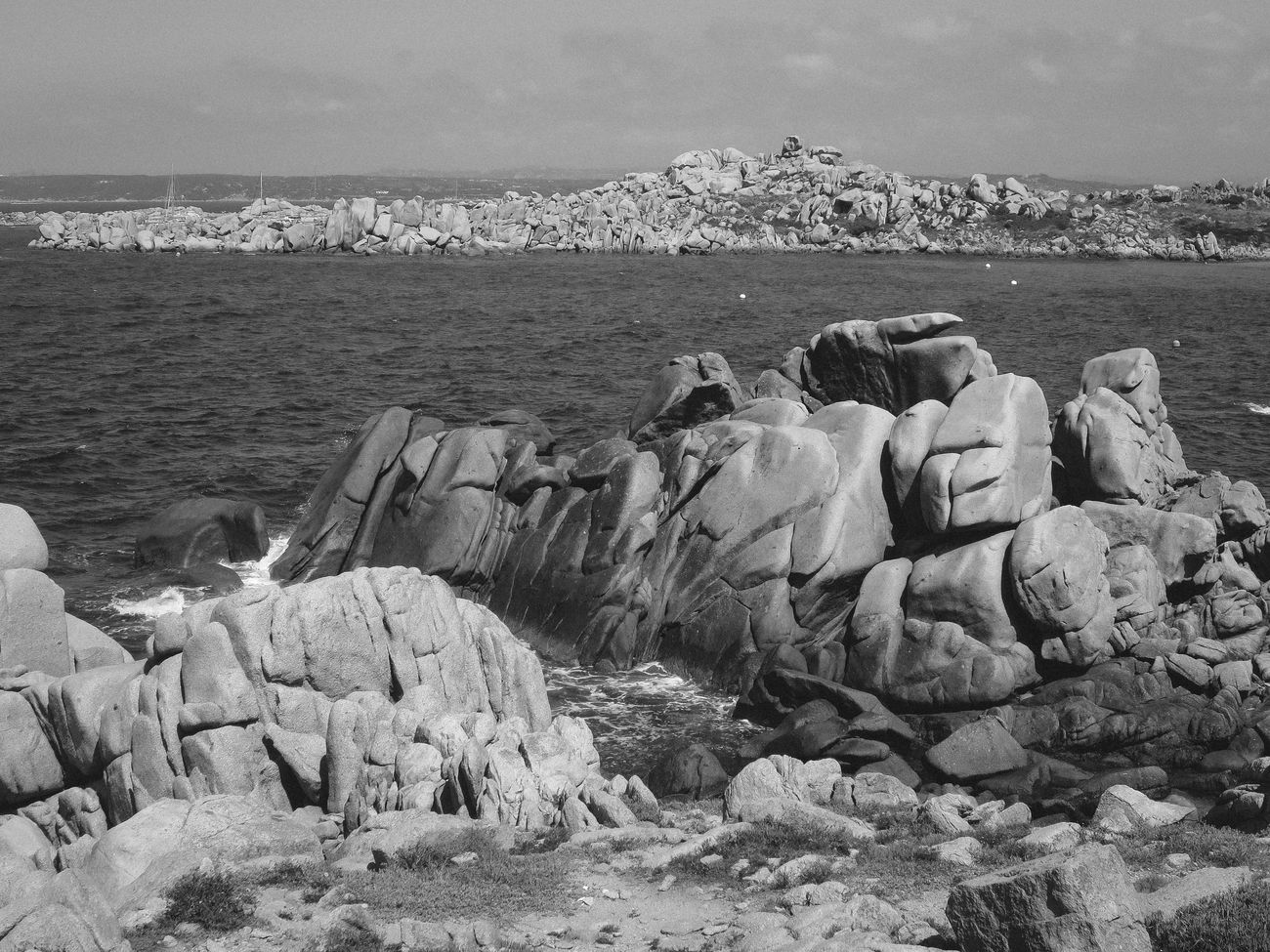 Beauty In Nature Blackandwhite Corse Day Ileslavezzi Landscape Large Group Of Animals Nature No People Outdoors Rock - Object Rockformation Sea Sky Water