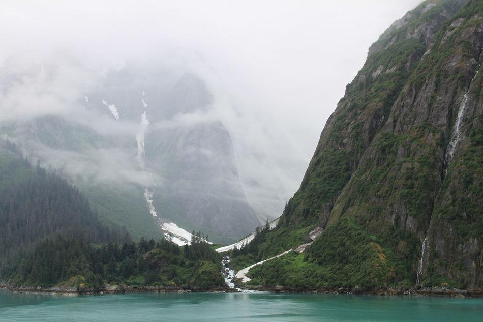 Beautiful stock photos of lake, Cold, Coniferous, Highland, Mist