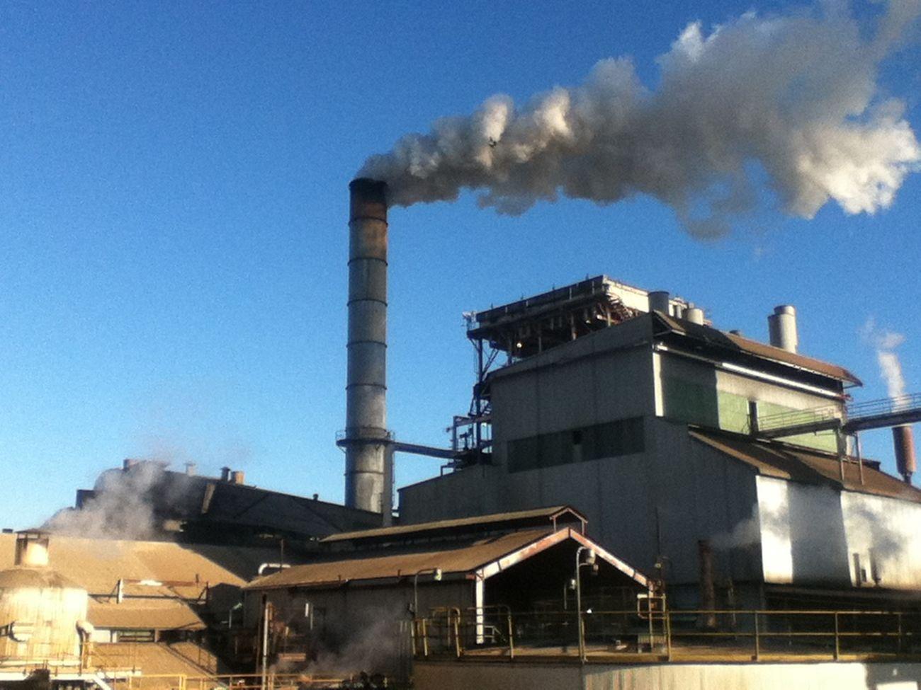 Sugarmill Ipod4 Sarina Smoke