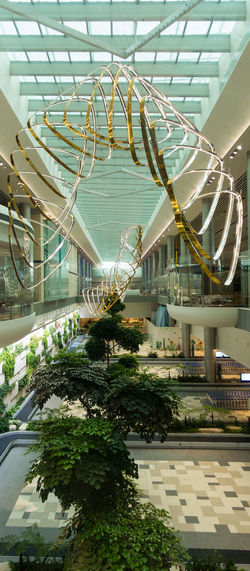 Art is Everywhere Hanging Kinetic Sculpture Suspended Airport Architecture Art Arts Culture And Entertainment Building Exterior Built Structure Centrepiece Connection Day Departure Hall Dynamic Eyecatcher Greenhouse Growth Indoors  Interior Nature No People Plant Sculpture Sculptures
