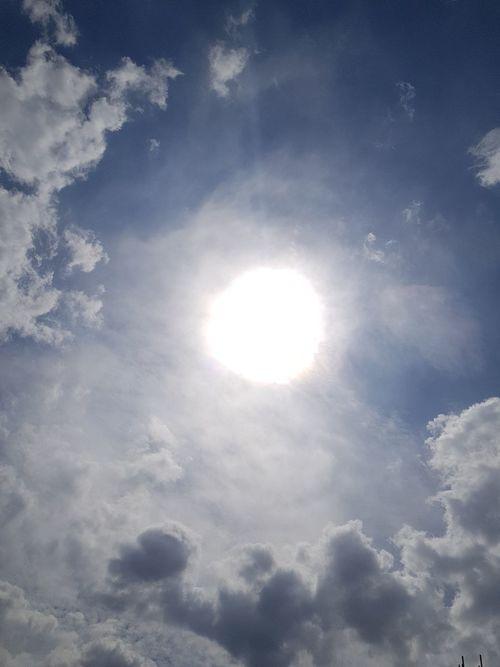 King Sun