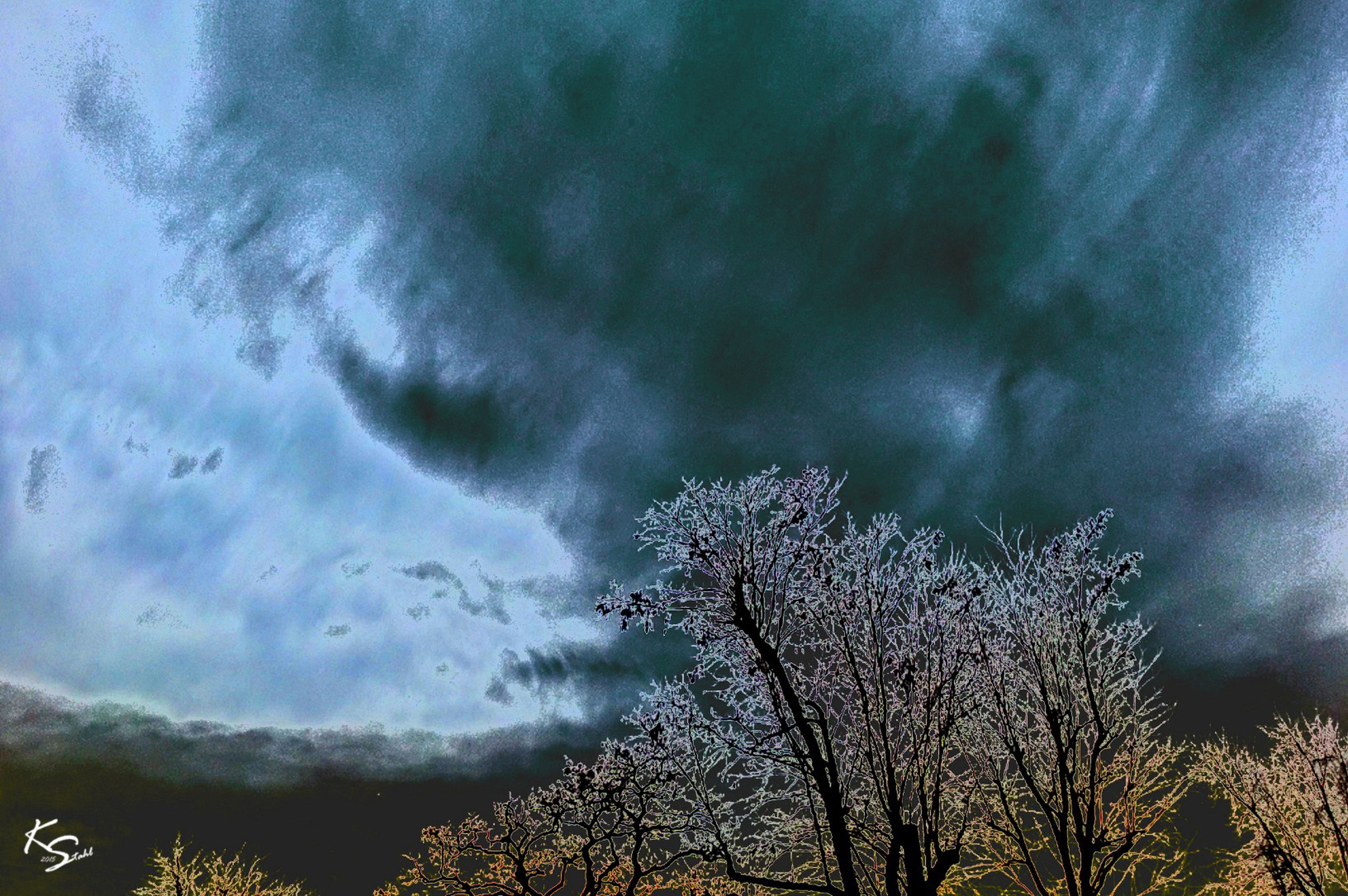 cloud - sky, sky, weather, cloudy, tree, low angle view, beauty in nature, tranquility, nature, scenics, overcast, bare tree, tranquil scene, storm cloud, branch, dusk, atmospheric mood, growth, dramatic sky, outdoors