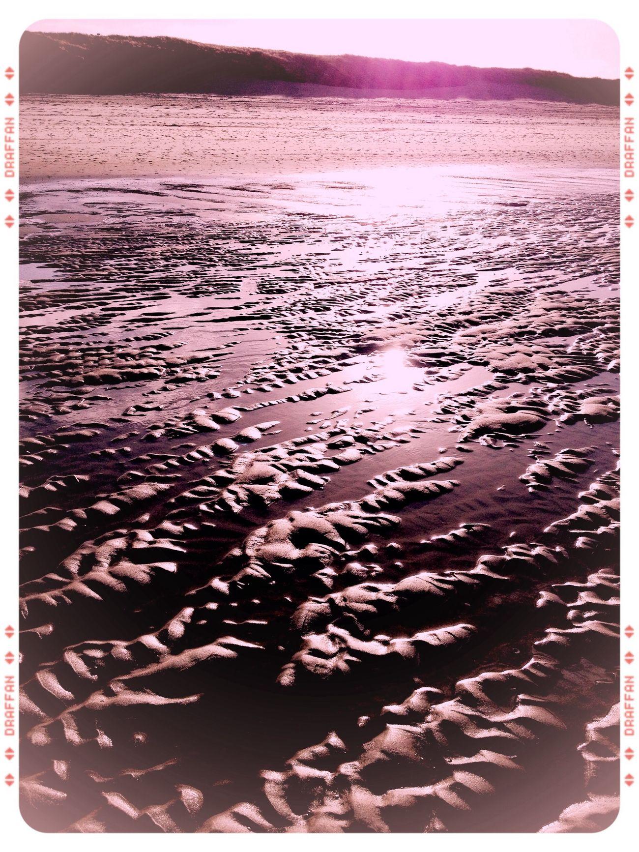 Sunny Day Beachphotography