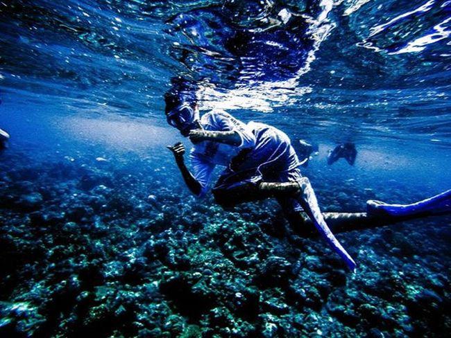Bukan lautan tapi kolam susu 😍🌊🐳🐋🐟 Instatravel Instatraveller Instatraveling INDONESIA IndonesiaPhotography Indonesiajuara Indonesian Mainsebentar Folkindonesia Instanusantara Instabali Exploreindonesia Menjanganisland Snorkling Snorklingspot Snorkeling Snorkelingtrip Snorkelingtime Snorkelingday Bali Explorebali 0mdpl