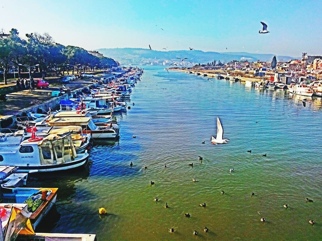 Hi!Hi! Hello World Love ♥ çanakkale Duryolcu EyeEm New Picture Neweyeem City Life