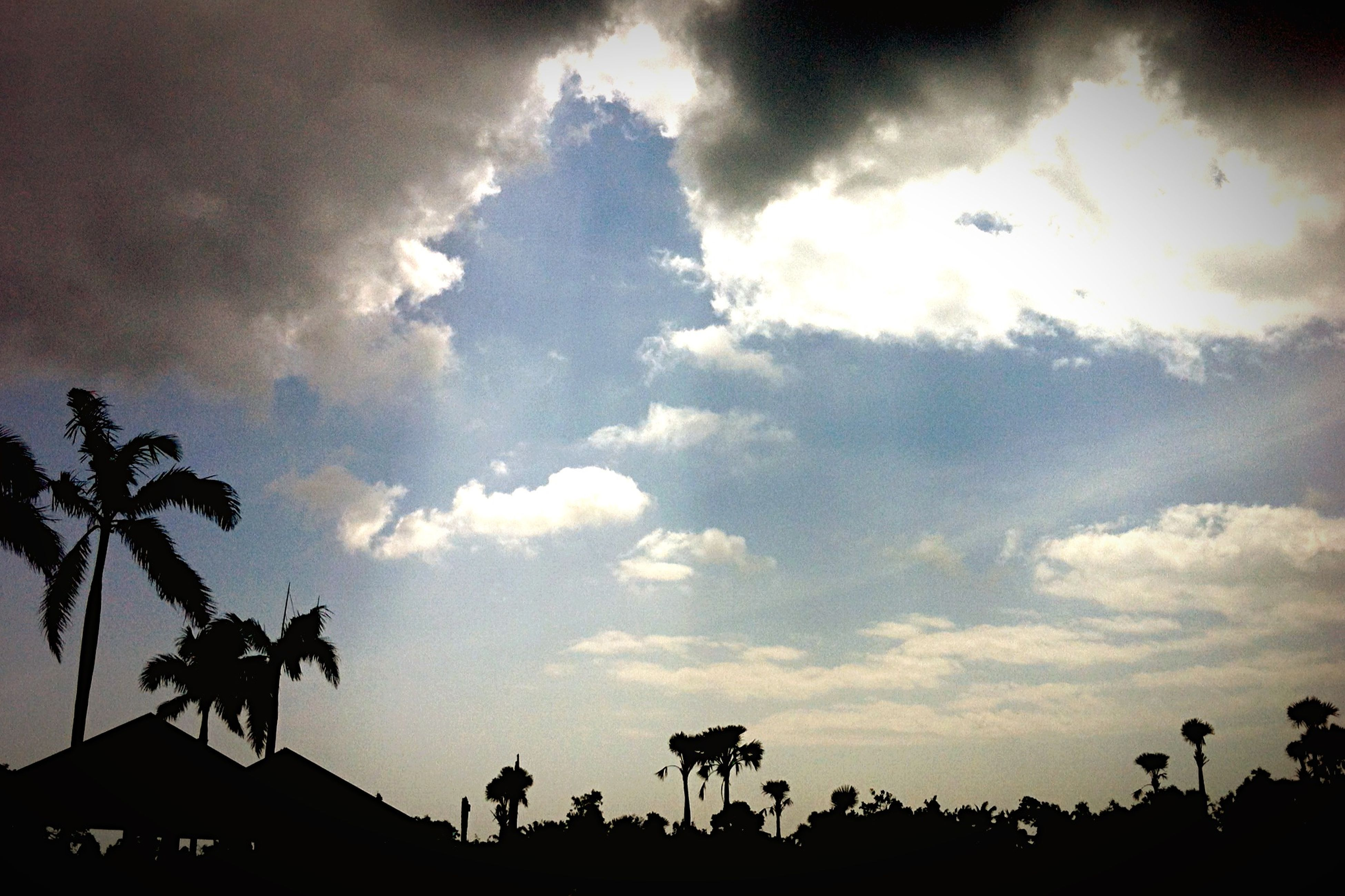 sky, silhouette, cloud - sky, low angle view, tree, cloudy, beauty in nature, cloud, nature, tranquility, scenics, sunset, tranquil scene, dusk, growth, outdoors, outline, palm tree, no people, idyllic
