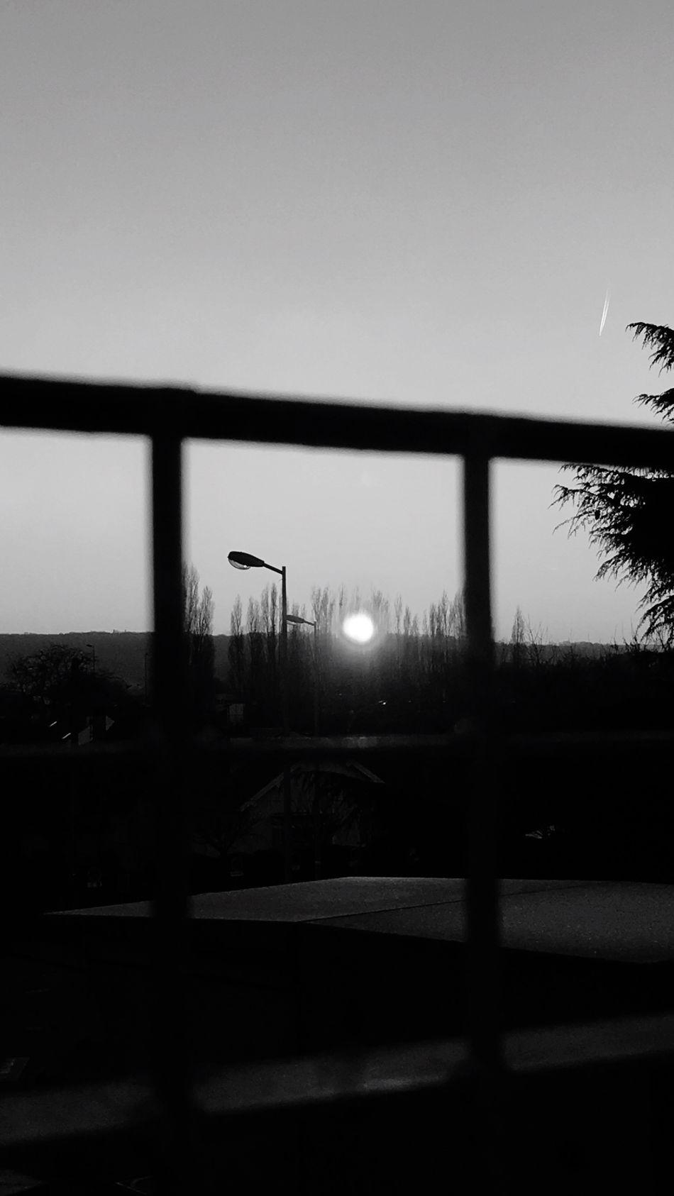 Je ne connais de regard plus transperçant que celui du soleil Sky Silhouette Sunset Nature Day Black And White Blackandwhite Noiretblanc