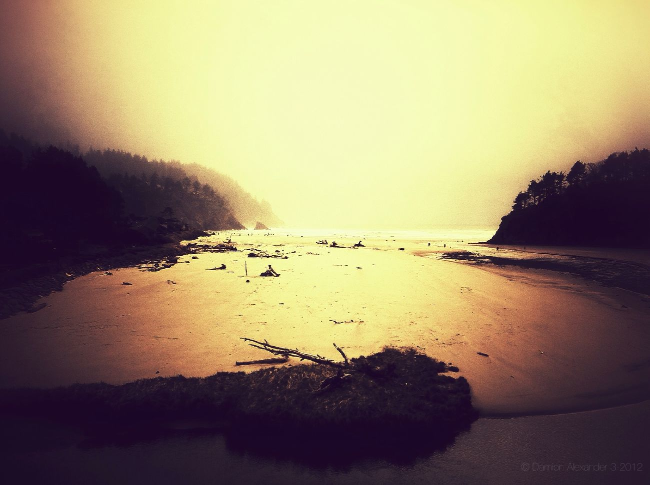 iphoneography at Neskowin State Beach IPhoneography