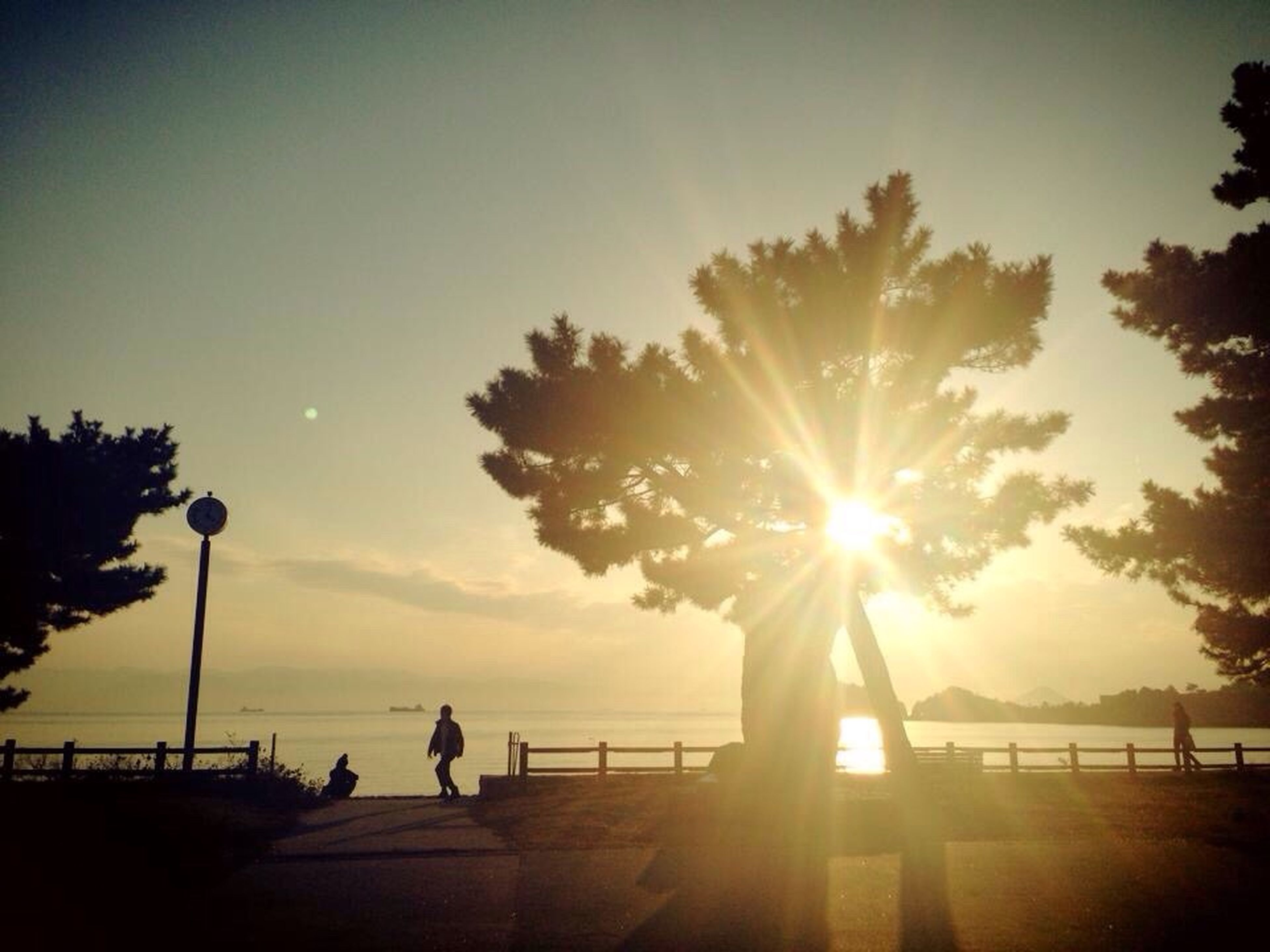 sun, silhouette, sunset, water, sky, sunlight, sunbeam, tranquility, sea, scenics, tranquil scene, beauty in nature, railing, tree, lens flare, nature, lifestyles, leisure activity, men
