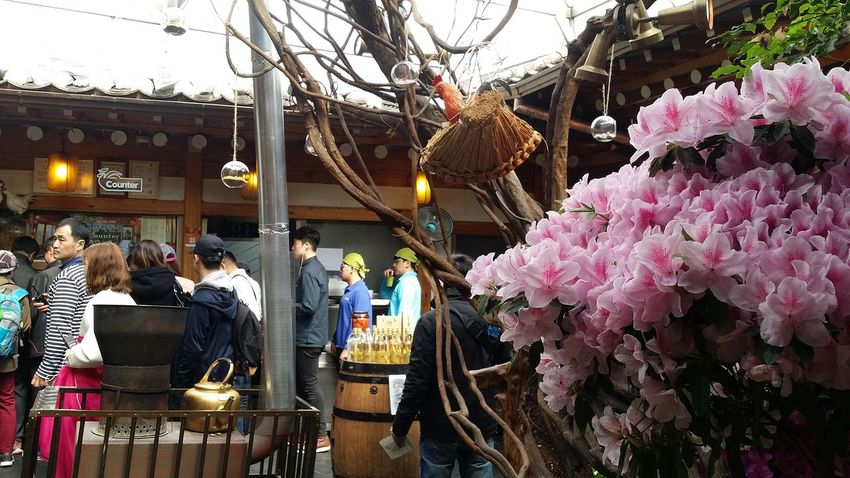 Rhododendrons Payment Queue Streetphotography Seoulstreetphotography Kr_streetphotography Jongno-gu Seoul South Korea Seoulspring2017