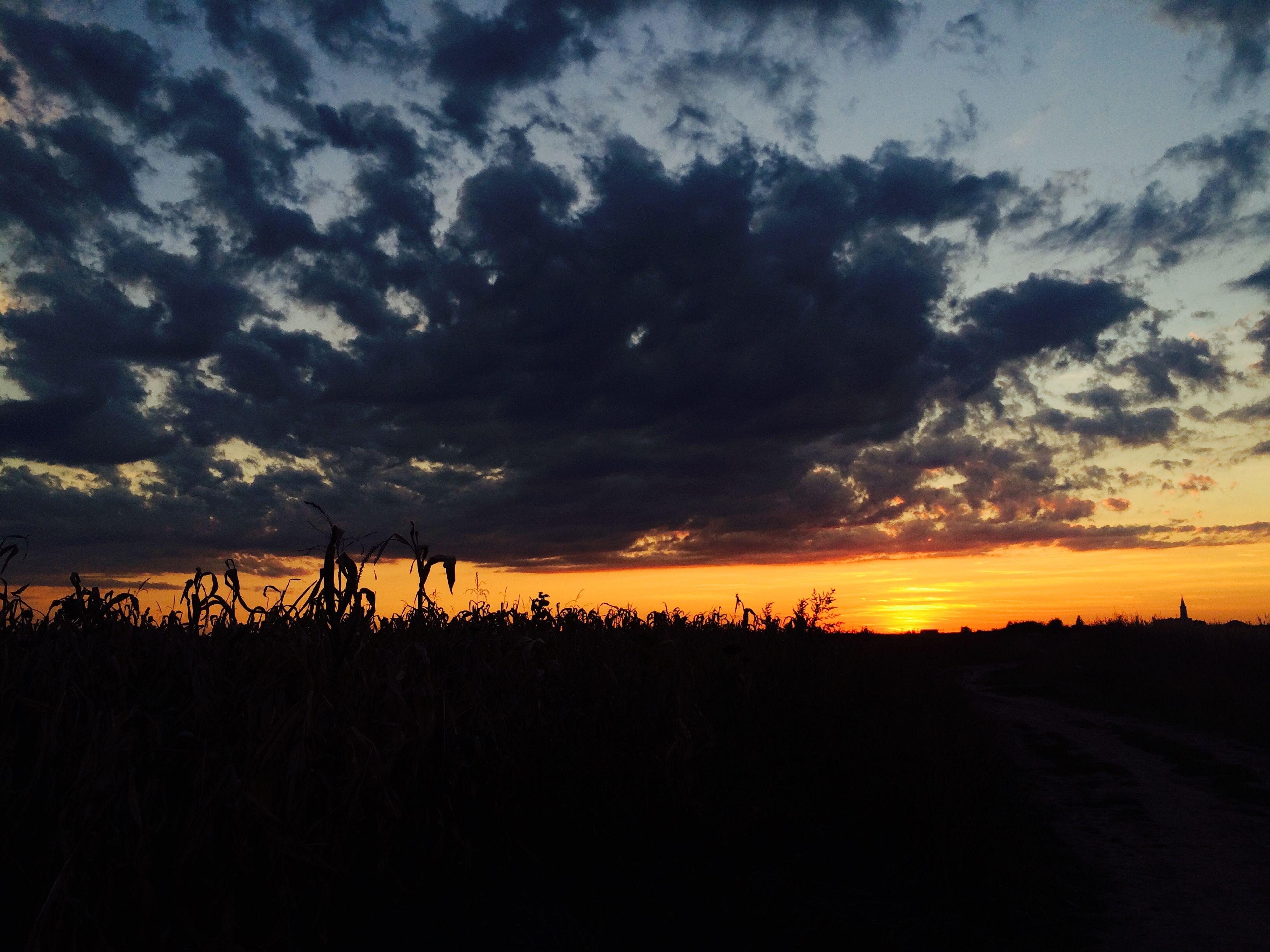 sunset, sky, silhouette, tranquil scene, tranquility, landscape, scenics, beauty in nature, field, cloud - sky, nature, orange color, cloud, idyllic, horizon over land, dramatic sky, rural scene, cloudy, outdoors, non-urban scene
