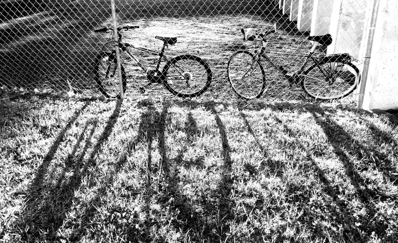 Light And Shadow Golden Hour Bikes Bicycles Dawn Of A New Day Dawn Light Playing With The Light Playing With The Shadows Metal Fence Chainlink Fence
