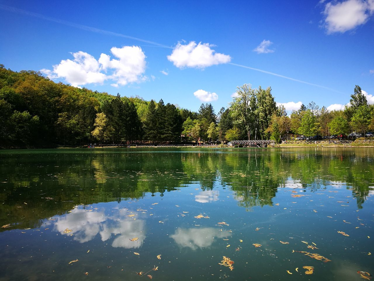 water, reflection, tree, lake, nature, beauty in nature, tranquility, sky, waterfront, tranquil scene, outdoors, scenics, no people, day, growth