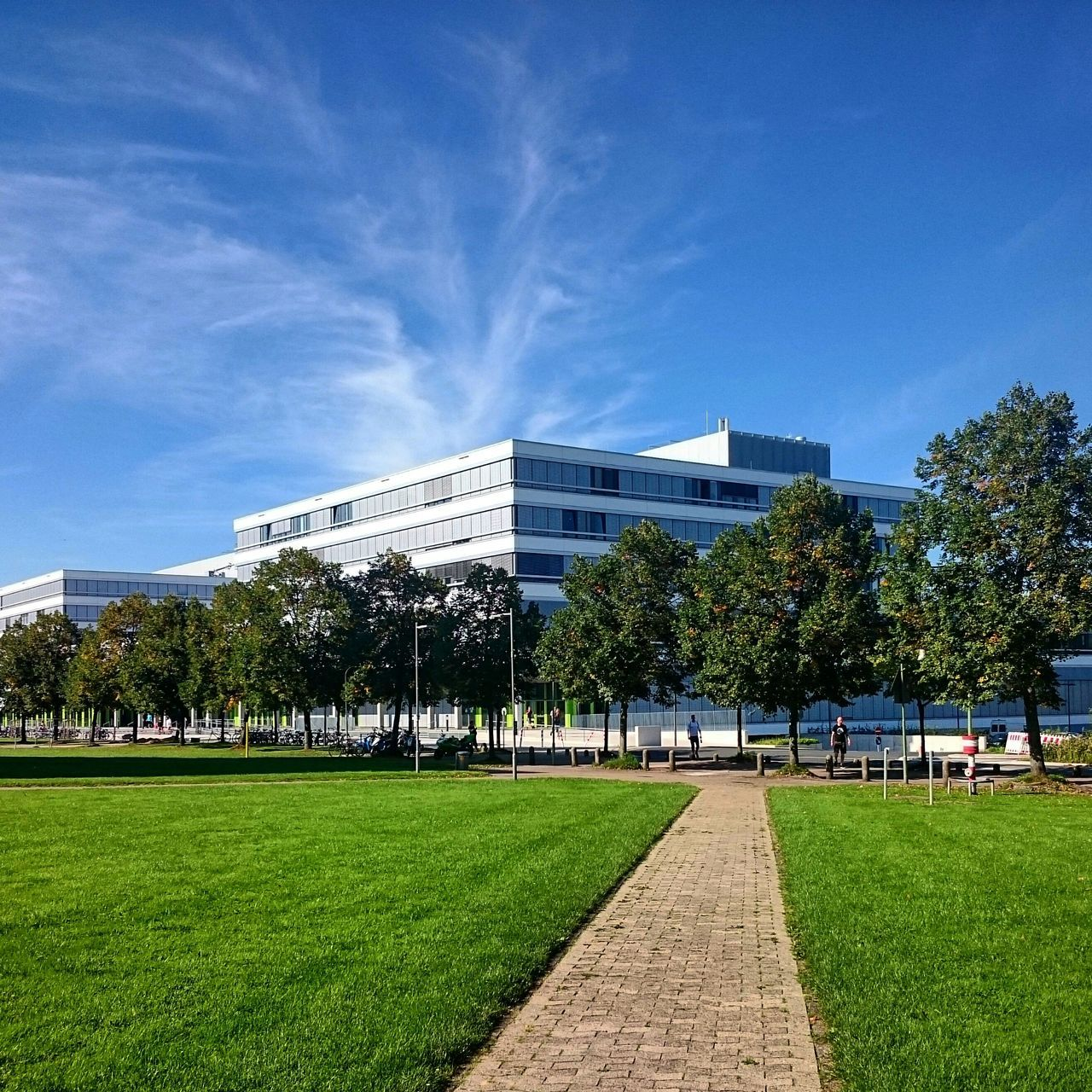 architecture, tree, grass, built structure, building exterior, sky, day, green color, modern, lawn, outdoors, park - man made space, travel destinations, growth, no people, plant, city, nature