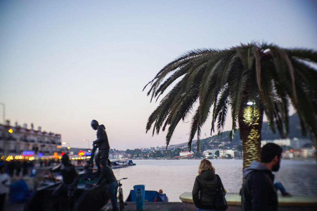 Seaside City Finding New Frontiers Vignette Outdoors Palm Tree Legacy Lenses Sony A6000 Streetphotography Freshness Travel Bokeh Sculpture Capture The Moment