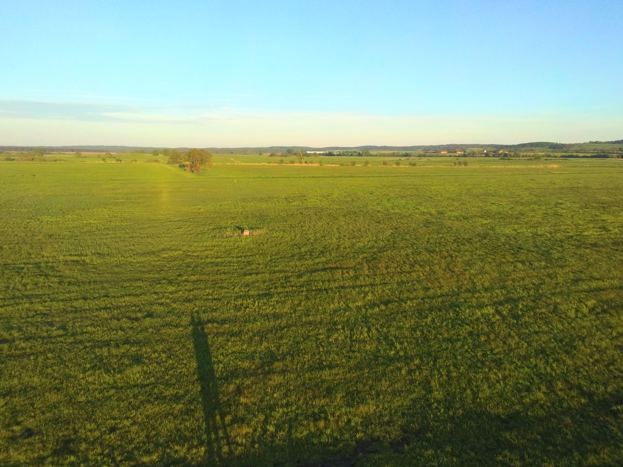 field, agriculture, landscape, farm, nature, rural scene, tranquil scene, tranquility, beauty in nature, crop, no people, scenics, day, growth, outdoors, grass, sky