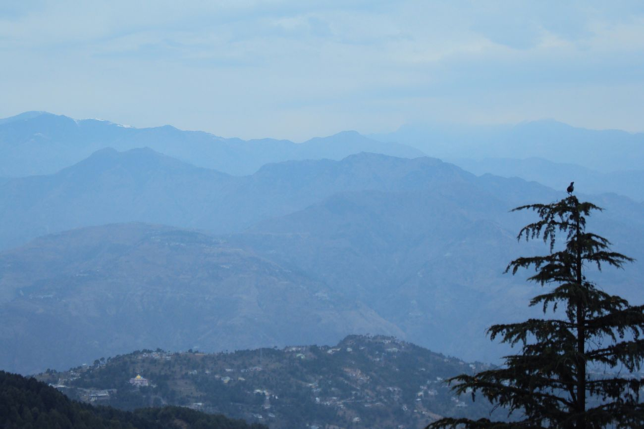 Bluehills Himalaya Mountains Nature Precision Traveller Landscape India Dalhousie HTC