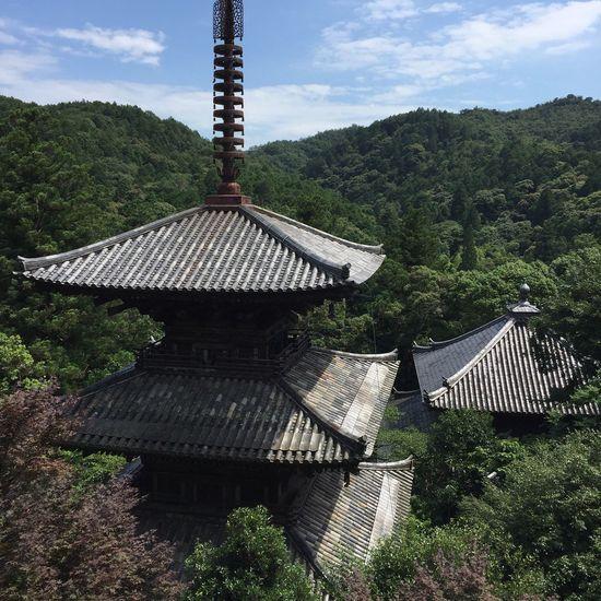 お寺 Japan Japanese Temple Temple Hyogo Hyogo,japan Tera