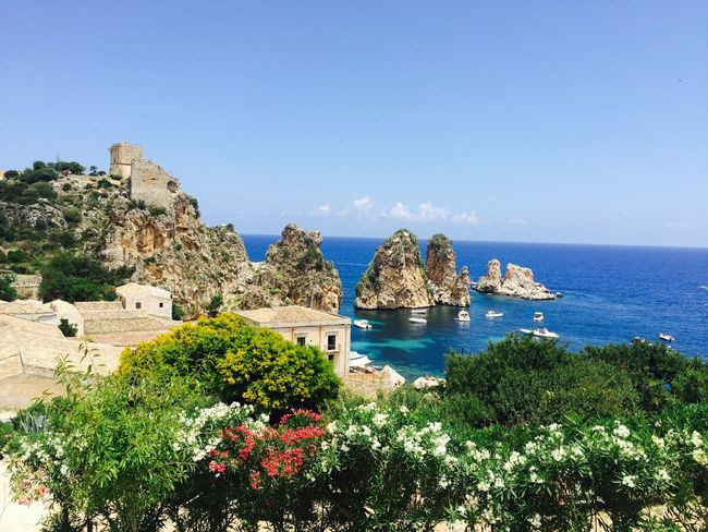 Sea Horizon Over Water Water Blue Scenics Beauty In Nature Tranquil Scene Flower Cliff Tranquility Tree Nature (null)Scopello Sea And Sky Mare Sicily Sicilia Tourism Clear Sky Plant Physical Geography Majestic Rock Formation Travel Destinations