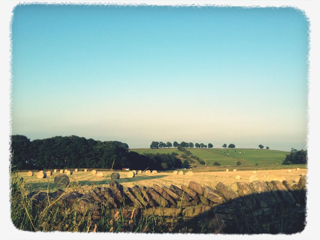 The run diaries Countryside Enjoying The View Running