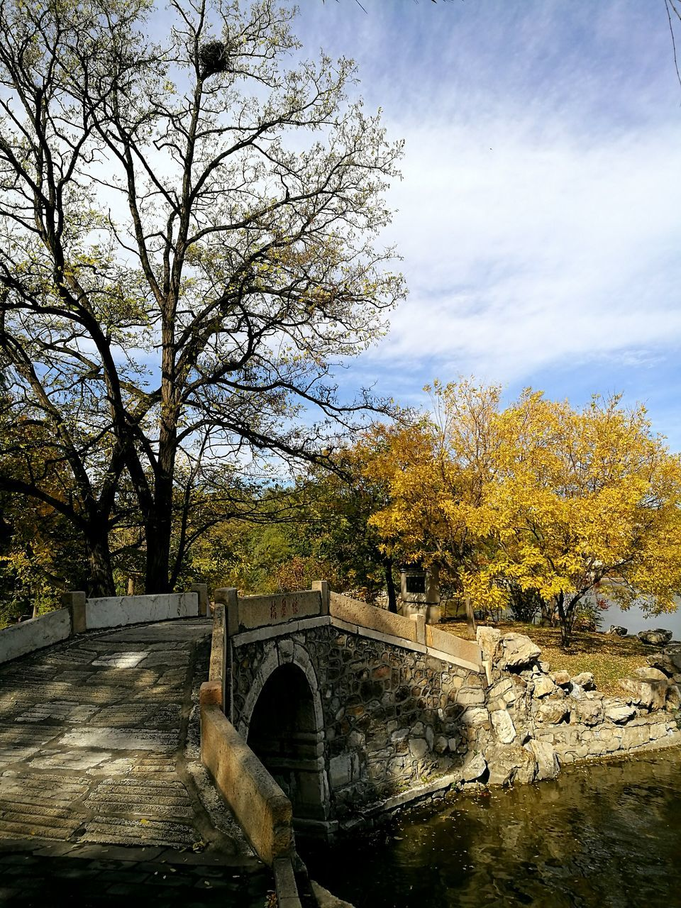 bridge - man made structure, tree, connection, nature, architecture, built structure, water, sky, cloud - sky, day, no people, outdoors, growth, river, scenics, tranquility, beauty in nature, autumn, footbridge, branch