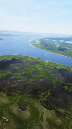 Bird's eye view leading out to ocean... Helicopter Ocean Tributaries Beautiful Nature