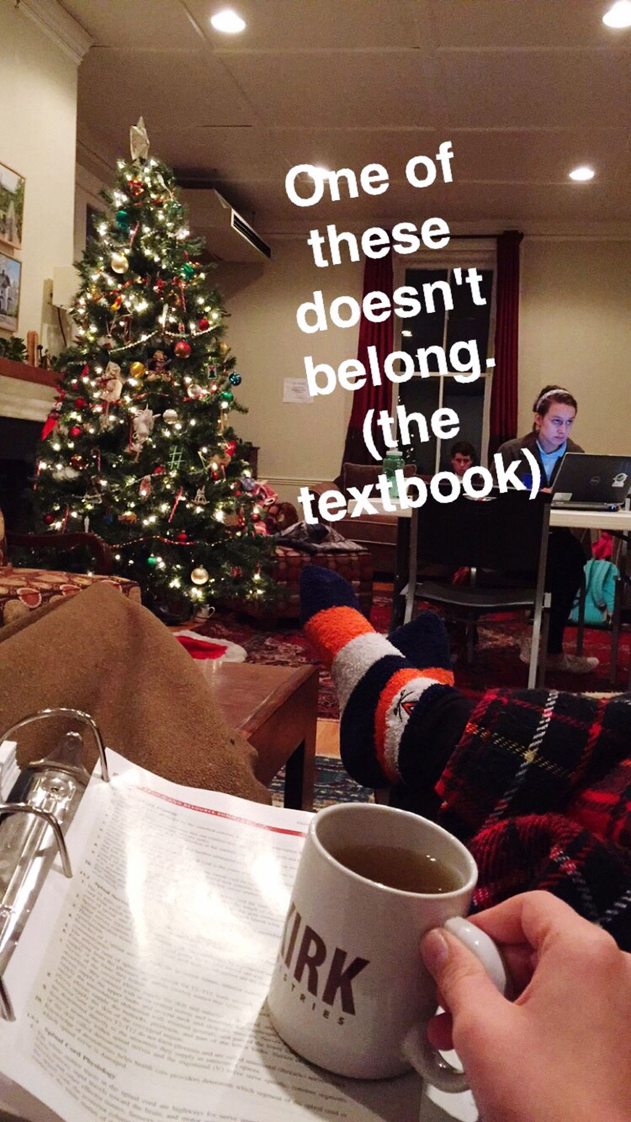 Study Hard Finals Week Christmastree Tea Eleanor  Blankets Kinda Happy Kinda Sad Definitely Stressed