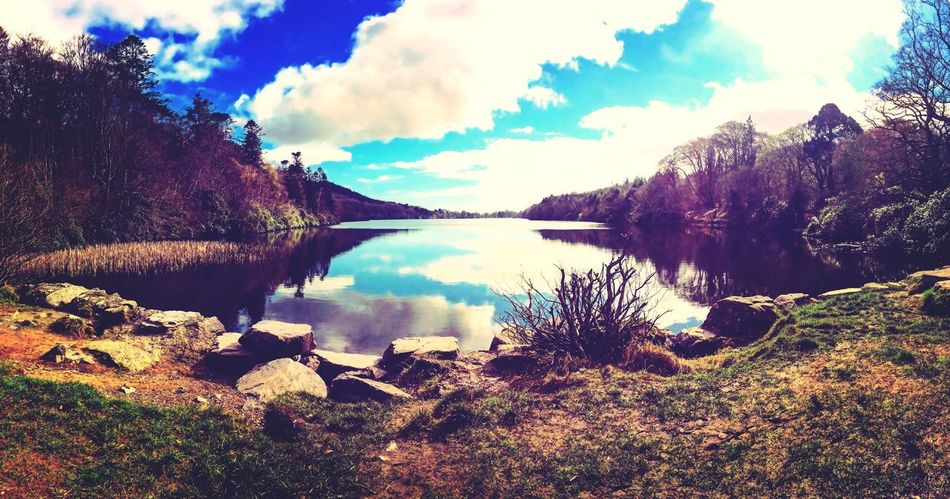 Castlewellan Forest Park, Northern Ireland Nature Water Sky Beauty In Nature Scenics Tranquility Tranquil Scene Tree No People Lake Outdoors Cloud - Sky Day Landscape First Eyeem Photo