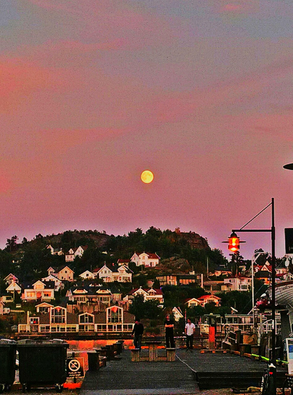 Summer night 25 Days Of Summer Sandefjord Norway Moon
