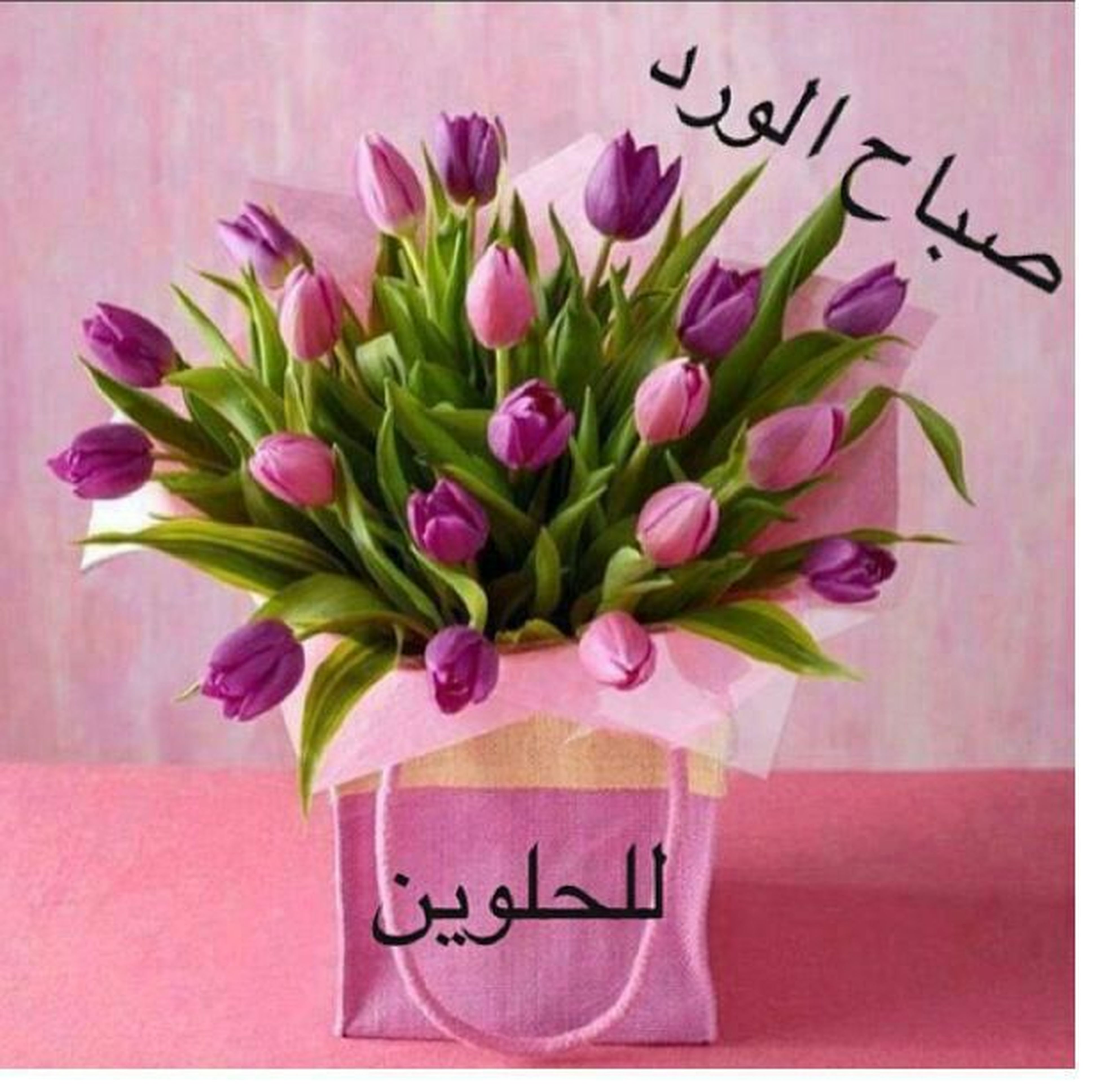 flower, indoors, wall - building feature, pink color, decoration, petal, freshness, text, close-up, table, vase, wall, fragility, art and craft, creativity, western script, no people, still life, art, home interior