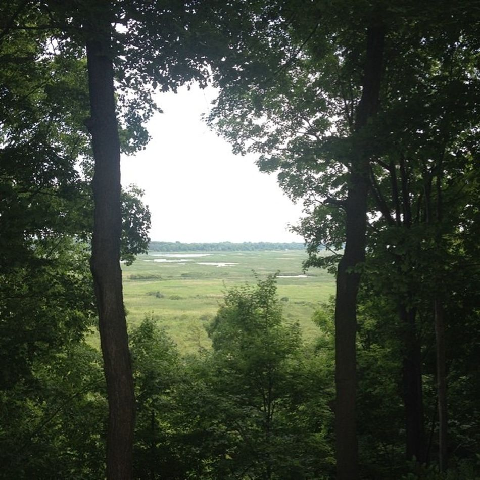 """View from our """"cabin"""". Best view in the park. @LongPointEcoAdv"""