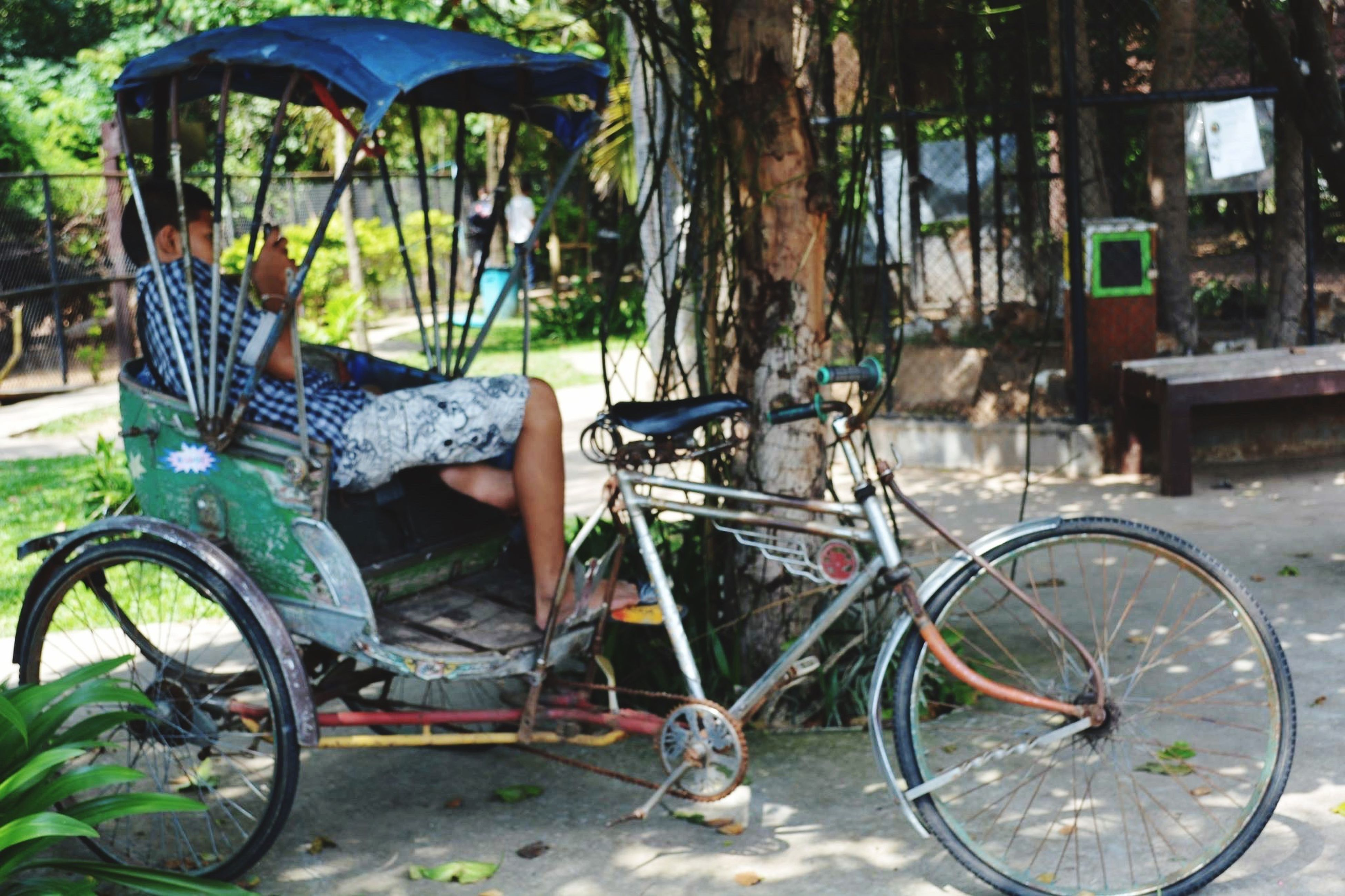 bicycle, land vehicle, transportation, real people, lifestyles, mode of transport, one person, outdoors, tree, nature, day, young adult, low section, people