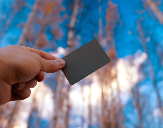 Accessory Advertise Blank Check Concept Correct Employment Empty Gesture Gray Grey Card Holding Human Identity Male Photography Taking Images White Balance
