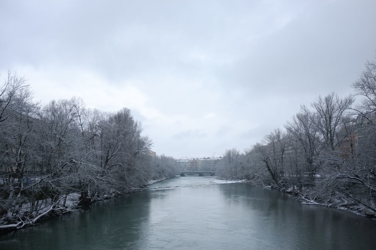The white land has come to us // Geneva, Switzerland City Geneve River Sky Snow Tranquil Scene Tranquility Tree Waterfront