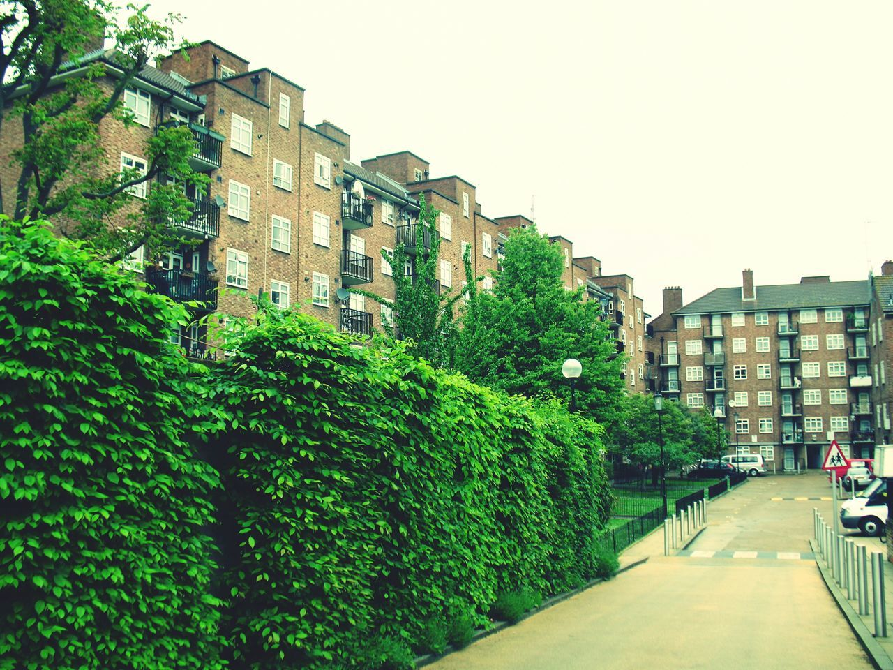 building exterior, architecture, city, built structure, outdoors, clear sky, tree, growth, plant, day, no people, nature, sky
