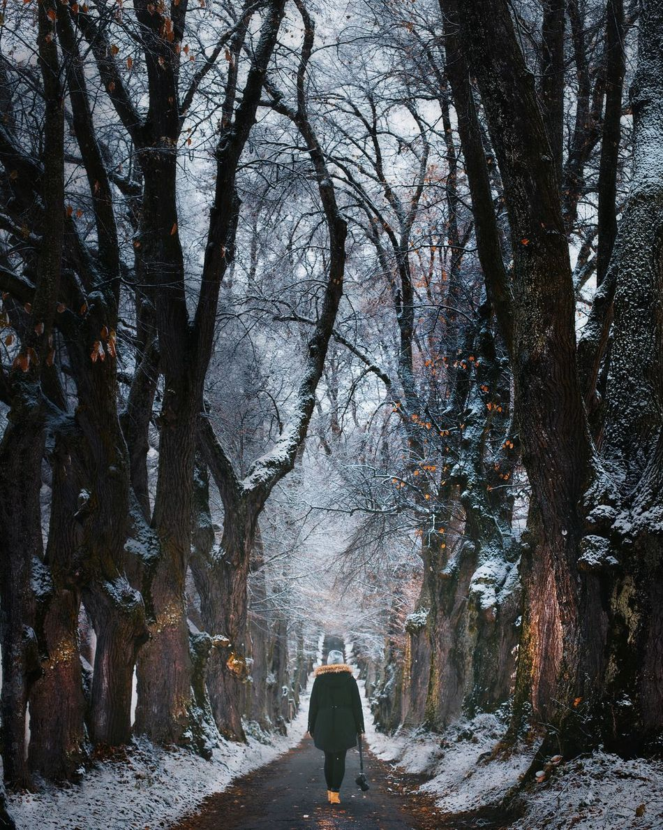 One Person Winter Beauty In Nature Forest Nature Outdoors Warm Clothing TheWeekOnEyeEM