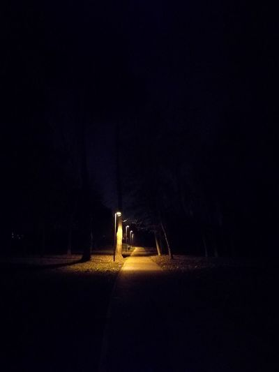 Illuminated No People Outdoors Night HuaweiP9 University Life Morgana Cesena Creepy Scene Yellow Light Dogsitting Dogsitter