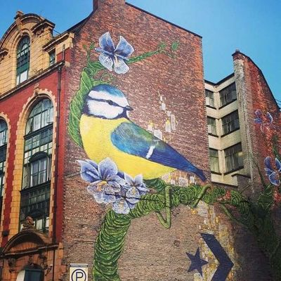 Graffiti Architecture Bird Building Exterior Built Structure City Close-up Day Flower Multi Colored No People Outdoors Sky Street Art Tree Urban Art Window