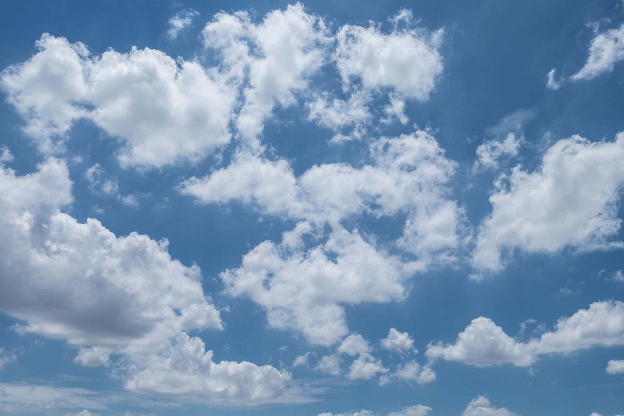 Big cloud with sky in summer Backgrounds Beauty In Nature Blue Cloud - Sky Cloudscape Cumulus Cloud Day Heaven Low Angle View Nature No People Outdoors Scenics Sky Sky Only