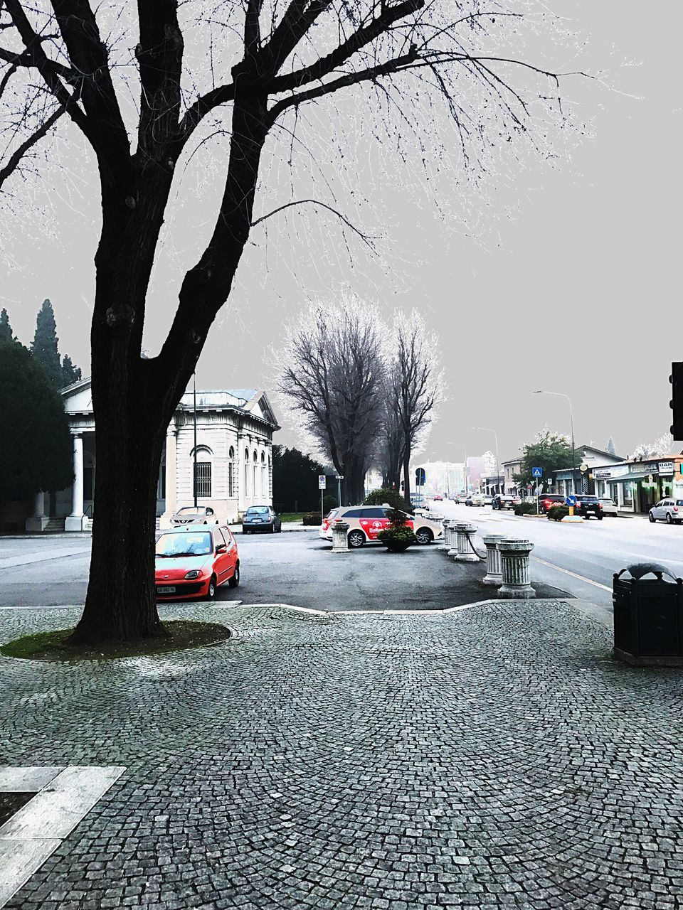tree, car, street, built structure, architecture, transportation, land vehicle, road, building exterior, bare tree, city, mode of transport, outdoors, day, city life, sidewalk, tree trunk, no people, sky, nature