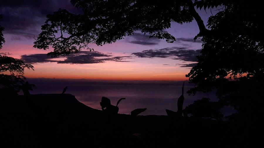 Breathtaking sunrise Silhouette Reflection Landscape Water Tranquility Nature Outdoors Beauty In Nature Beauty In Nature Lake View Low Angle View Sunrise Silhouette No Filter, No Edit, Just Photography Sunrise Collection 2017 Travel Photography Malawi Scenics Sunlight Sunbeam Capture The Moment Freshness Camping Life Africa Day To Day African Beauty Mushroom Farm Travel Destinations The Great Outdoors - 2017 EyeEm Awards