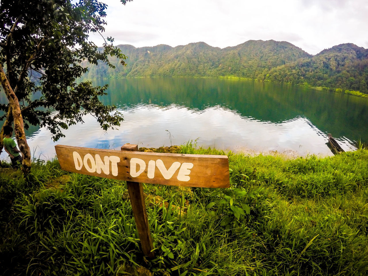 But why does it tell me the opposite? :D Dive Green Lake Lake View Landscape Mirror Lake Nature No People Outdoors Sky Tree Water