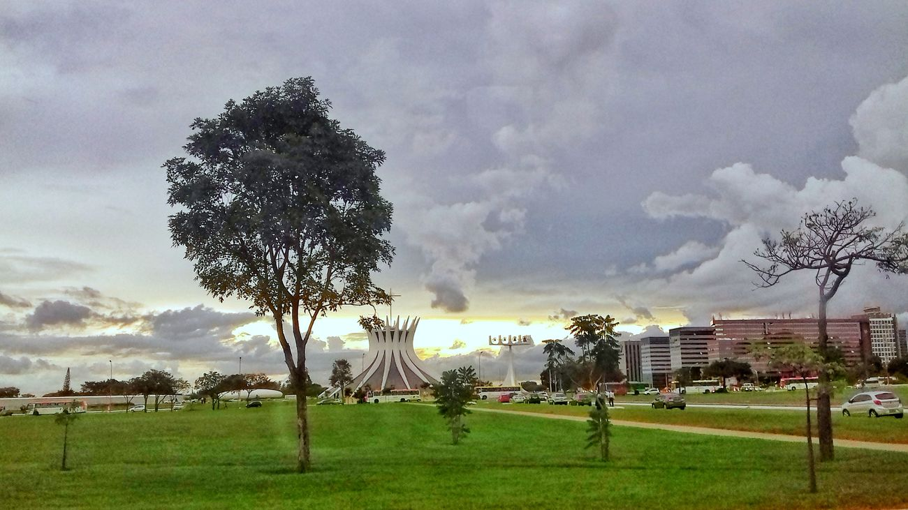 Grass Cloud - Sky Tree Sky Nature Green Color No People Outdoors Landscape Day The City Light Modern Street Brasília - Brazil Streetphotography City Low Angle View Architecture Beautiful View Arquitecture Monument Urban Architecture