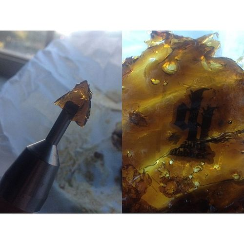 Dabsforfreedom Holy chit! Photo edited by @colorismything Iclaritycounts Shatter