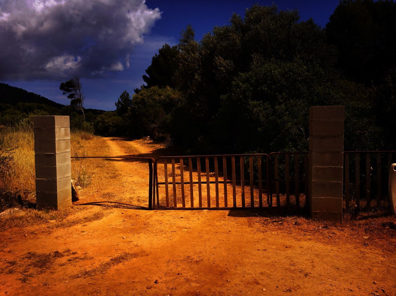 tree, gate, outdoors, sky, no people, architecture, nature, day