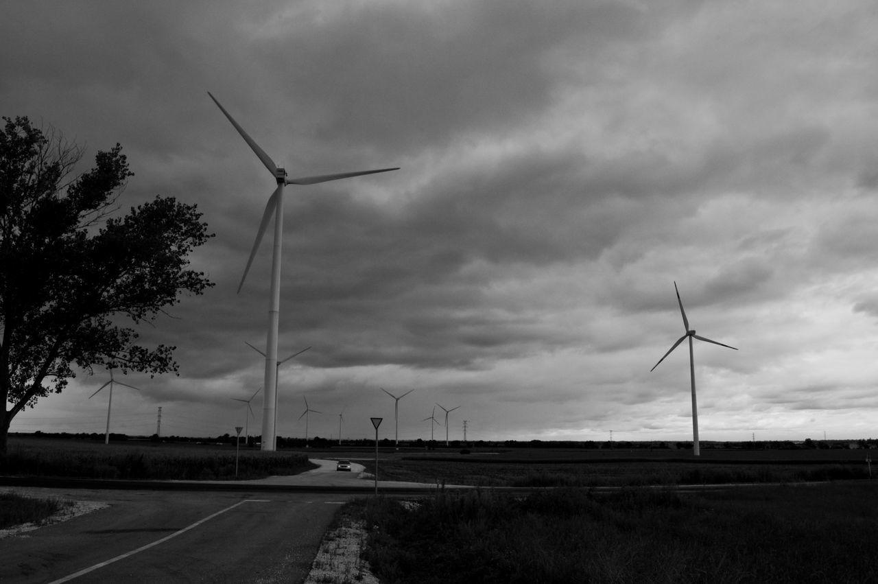 Rural Landscape With Electricity Pylon