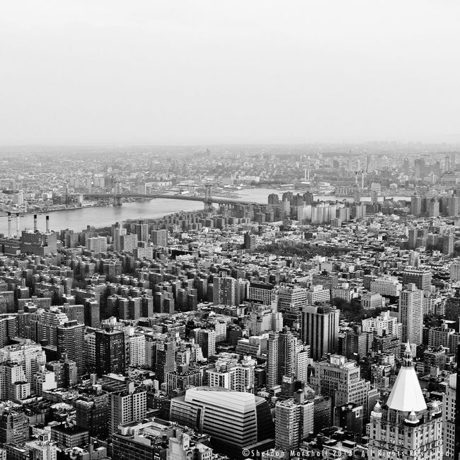 Concrete jungle. New York Cityscape Urban Architecture NEXTshotPhotos