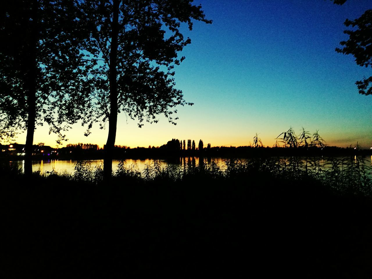 water, reflection, silhouette, tree, lake, sunset, nature, tranquil scene, no people, lakeshore, sky, outdoors, beauty in nature, tranquility, clear sky, scenics, growth, day
