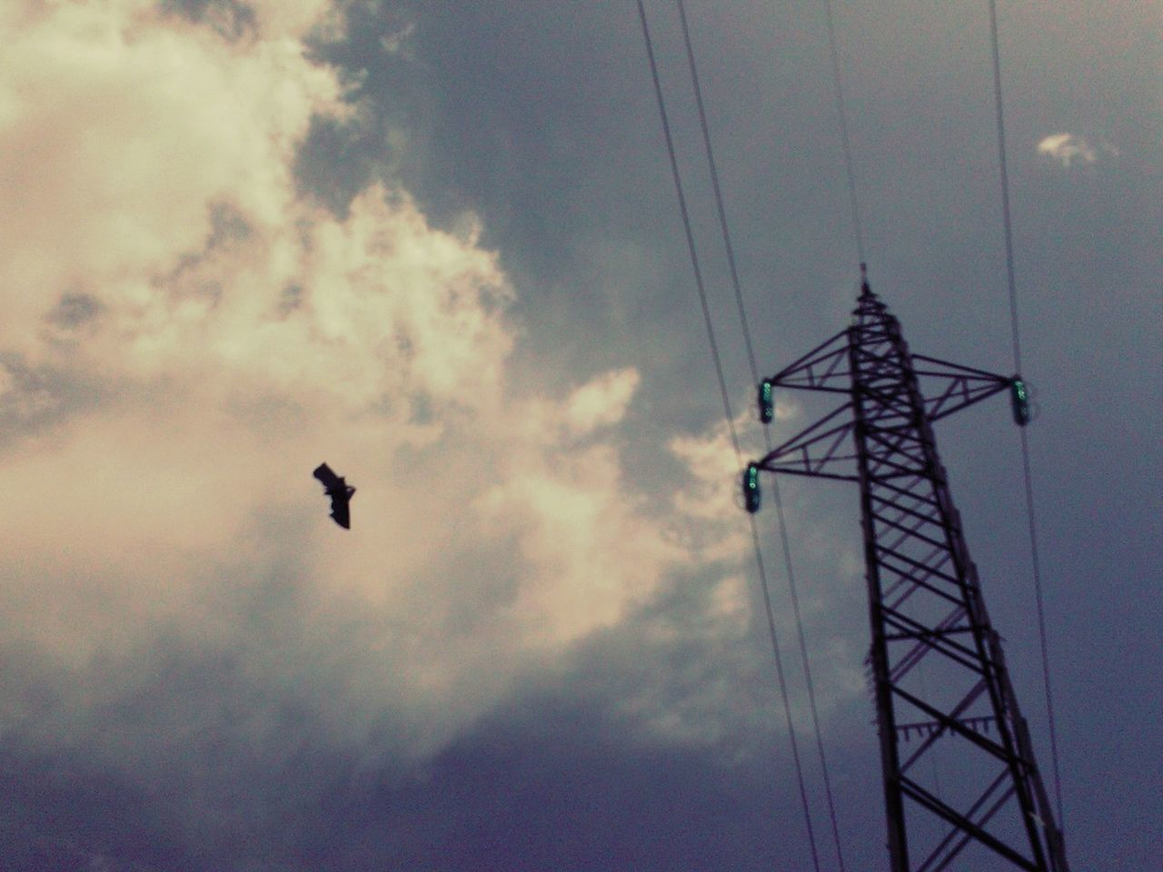 Summer Sky Flying A Kite Wires In The Sky