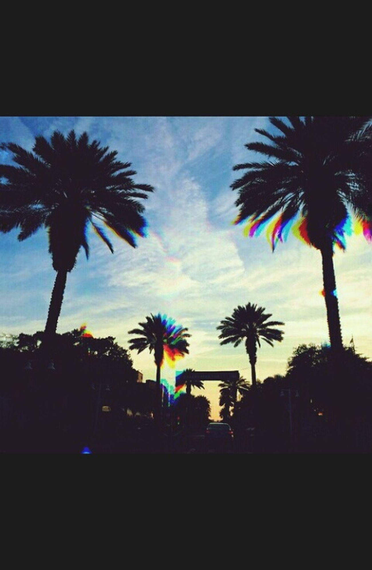 Enjoying Life Summertime Vacations☺️🍹 Follow4likes . Like4like